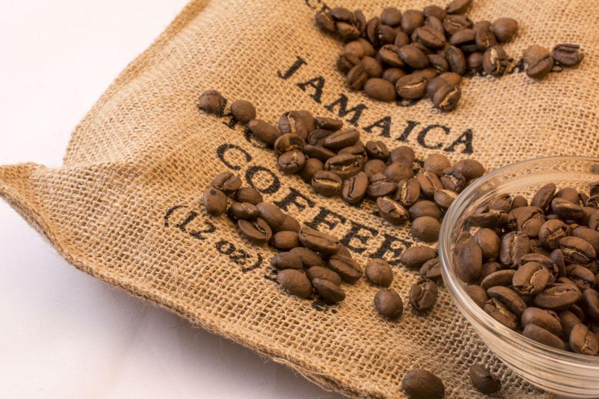 """""""Blue Mountain"""", cafeaua care crește pe ritmuri dereggae!"""
